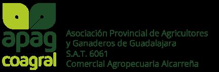 Logo Grupo APAG